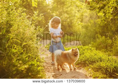 Little girl and pets. Girl and dog standing on the road in the city park. Pedigree dogs Spitz.