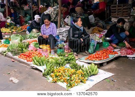 HA NOI, VIET NAM, February 12, 2016 rural women, suburban Ha Noi, Vietnam, fruit business, home market