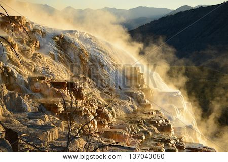 Mammoth Hot Springs In Yellowstone