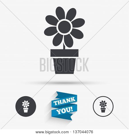 Flowers in pot icon. Bouquet of flowers with petals. Macro sign. Flat icons. Buttons with icons. Thank you ribbon. Vector