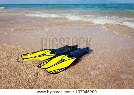 fins for snorkeling at the beach near water