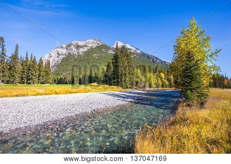 Autumn in the Canadian Rockies.  Dry creek in mountain valley Banff park