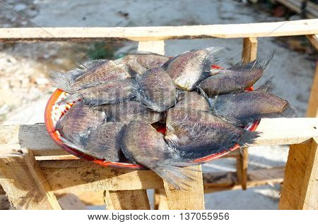 Dried Snake Skin Gourami fish on tray with sun light
