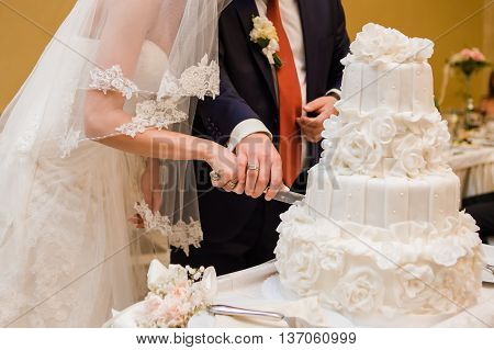 Big wedding cake. Candy bar. Bride and groom. Candy bar