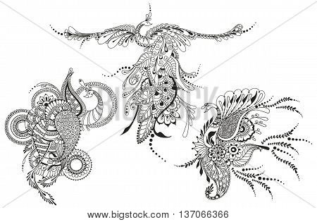 Illustration of three Phoenix Birds. Peacocks for tattoo template business style printing on clothes greeting cards or other