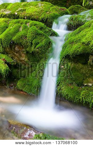 small mountain stream on green stones