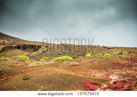 beautiful colorful terrain of Lanzarote with plants and cloudy sky, Spain