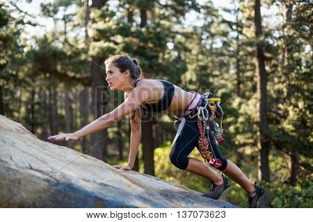 Sporty woman climbing a rock on the wood