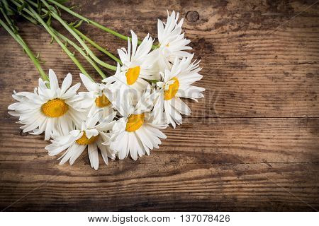 group of chamomile flowers on wooden background with space for text