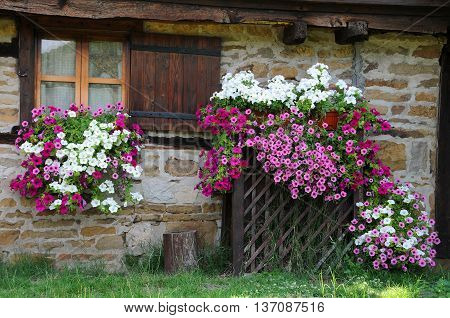 Stone wall of the house decorated with flowers in Bulgaria