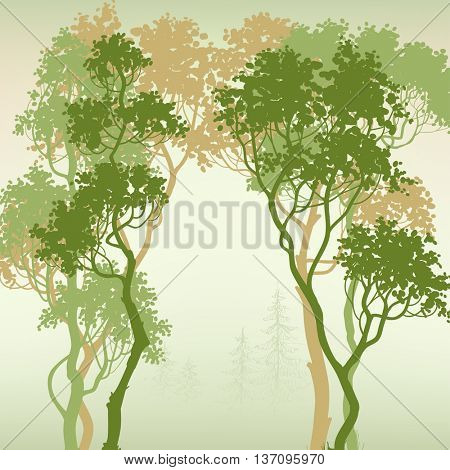 Green forest background, space for text