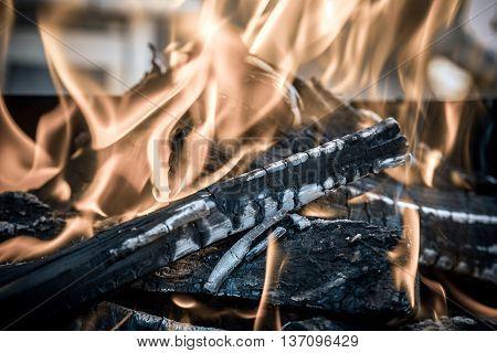 birch firewood burning in a metal brazier