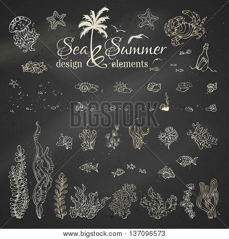 Vector Set Of Chalk Marine Design Elements.