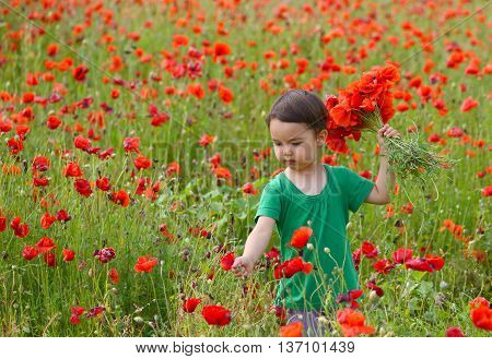 Cute child girl in poppy field. very happy child girl in poppy field. Girl in poppies
