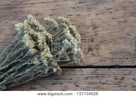 Associated dry autumn yarrow on wooden boards
