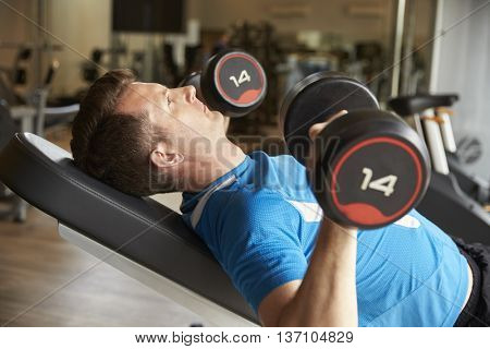 Man works out with dumbbells on a bench at a gym, side view