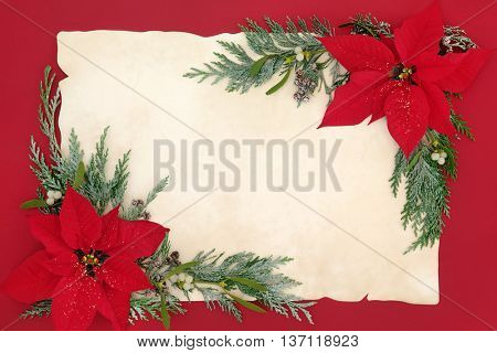 Poinsettia flower background  border with mistletoe and cedar cypress snow covered leaf sprigs on old parchment paper  over red.