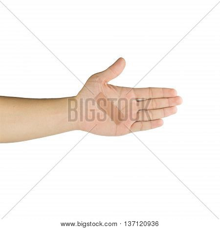 Palm and fingers with adhesive bandage isolated on white background