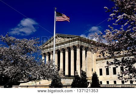Washington DC - April 9 2014: 1935 Supreme Court of the United States framed by floweirng Japanese cherry trees on First Street SE