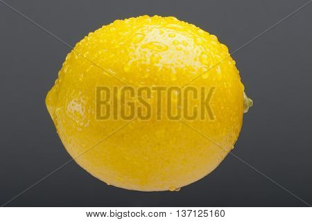 Lemon, Citrus Fruit - Studio Shoot