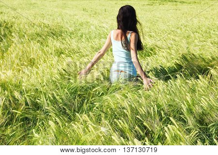 the girl goes on the barley field touching barley by her hand a back to a camera