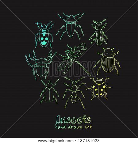 Set of doodle sketch Bugs and beetles. Insects collection kit. Isolated vector illustration
