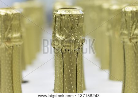 A lot of champagne bottles necks and top caps at standing the light background.