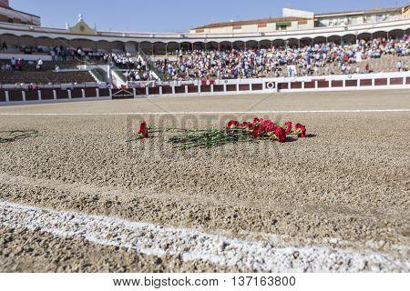 Linares SPAIN - August 28 2014: Exact place where he died Manuel Rodriguez Sanchez