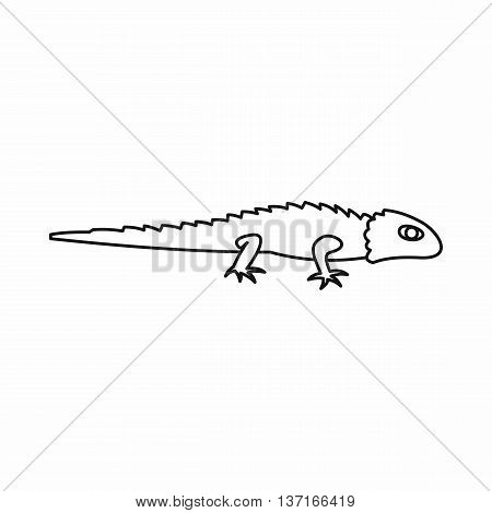 Iguana icon in simple style isolated vector illustration. Reptiles symbol