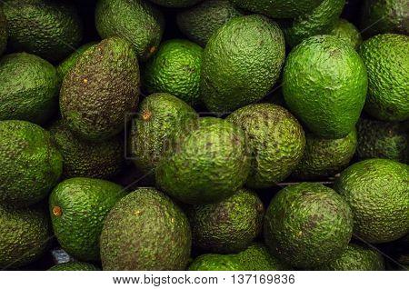 Fresh organic avocados in display at local farmers market