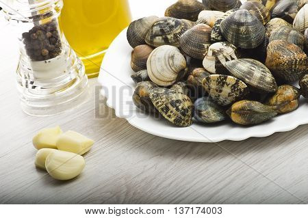 Fresh raw Clam close up on white