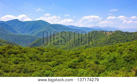 Hills and forests seen from above. Georgia.