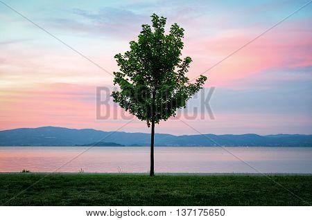 Lake Trasimeno (Umbria Italy) at twilight colors