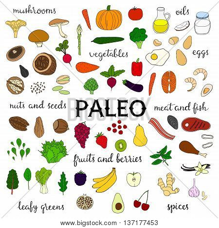 Hand drawn paleo diet food isolated on white background. Vegetables fruits berries nuts seeds leafy greens meat seafood fish mushrooms spices oils.