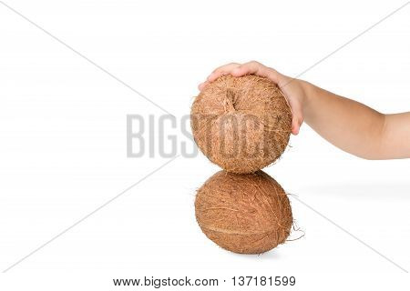 Children hand tries to break a coconut on another isolated on white background