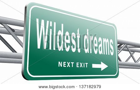 make wildest dreams come true, live and realize your dream, 3D illustration on white background