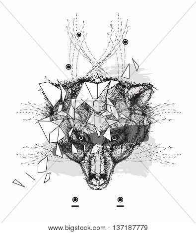 Animal bear head triangular icon , geometric trendy line design. Vector illustration ready for tattoo or coloring book. Bear head low-poly sketch hand drawn