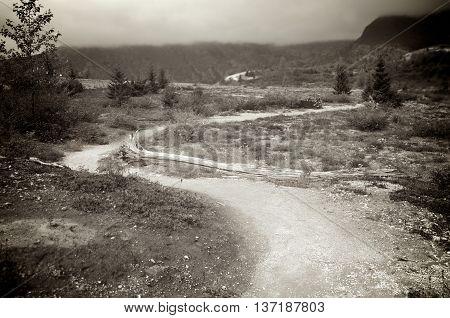 A narrow twisting path near Mt St Helens