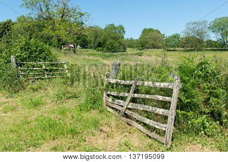 Agriculture landscape with fence in France