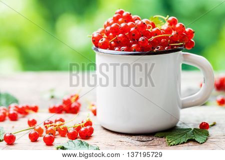 Mug Of Red Currant Berries On Table Outdoors