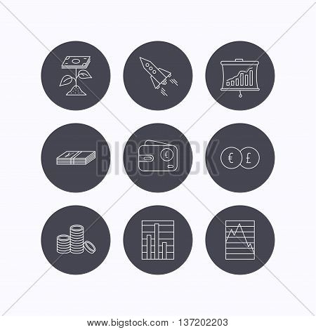 Profit investment, cash money and startup rocket icons. Wallet, currency exchange and euro linear signs. Chart, coins and statistics icons. Flat icons in circle buttons on white background. Vector