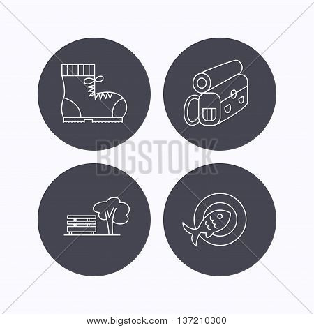 Park, backpack and hiking boots icons. Fish dish linear sign. Flat icons in circle buttons on white background. Vector