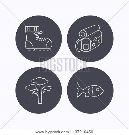 Pine tree, fish and hiking boots icons. Bonfire linear sign. Flat icons in circle buttons on white background. Vector