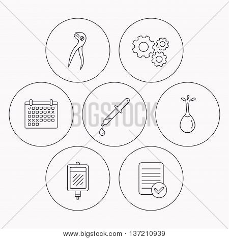 Blood donation, pipette and dental pliers icons. Clyster linear sign. Check file, calendar and cogwheel icons. Vector