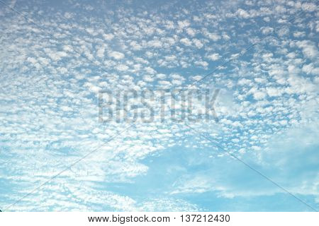 looking up Evening sky and cloud nature background.
