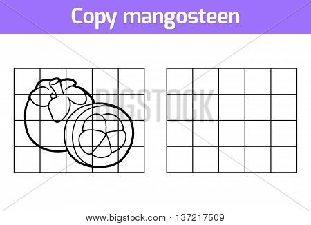 Copy The Picture. Fruits And Vegetables, Mangosteen