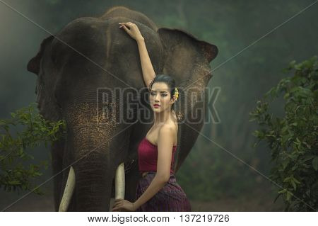 The elephant with woman in traditional dress