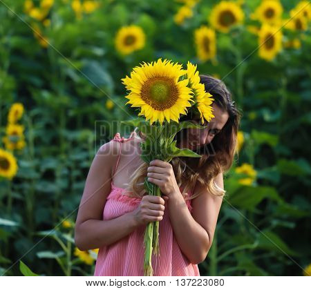 Young beautiful woman stands in a field of sunflowers