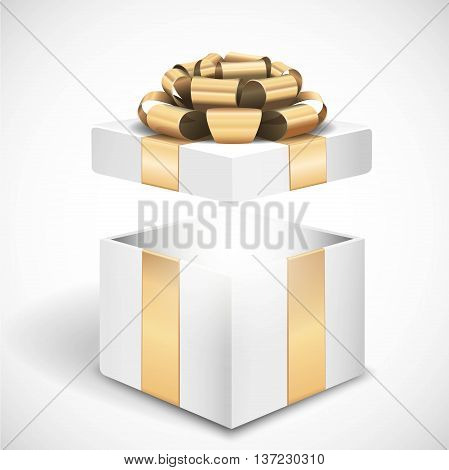 Vector open gift box on white background