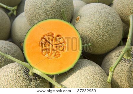 Cantaloup melon that serving in the restaurant